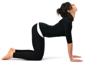 Cat-Stretch-Pose-Marjariasana2