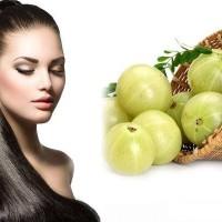 amla for hair (1)