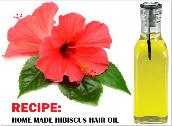 hibiscus-hair-oil-homemade