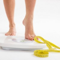 Best of Quality Protein for weightloss