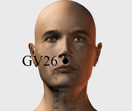 Face Point gv26