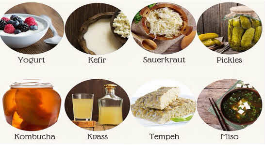 Probiotic rich foods