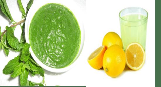 Fresh mint or Pudina