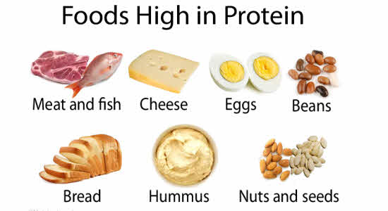 food-high-in-protein