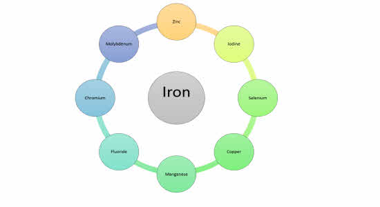 iron-benefits